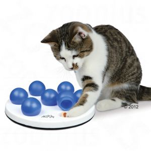 Cat Aktivity