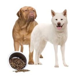 Konzervy pro dospělé psy