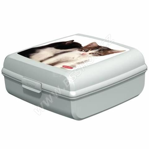 Curver svačinový box velký kočka 1ks