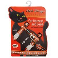 Postroj RD s vodítkem - kočka - Ref. Oranžová
