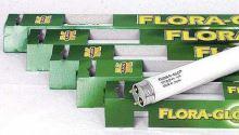 Zářivka Flora GLO T8 - pro podporu růstu rostlin