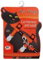 Postroj RD s vodítkem - kočka - Cosmos Orange