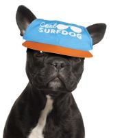 Kšiltovka Surfdog