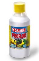 Dajana Proflor