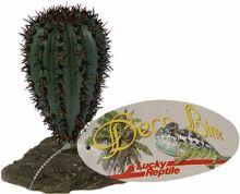 Lucky Reptile Saguaro Cactus malý, cca 12cm