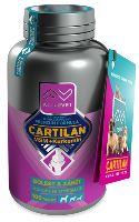 Cartilan MSM+Kurkumin 100tbl