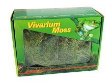 Lucky Reptile Vivarium Moss 150g