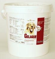 Gelacan Plus Darling 5kg