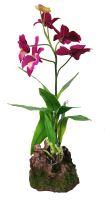 Lucky Reptile Orchidej - fialová cca cca 40cm