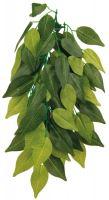 Plastová rostlina 20x30cm FICUS