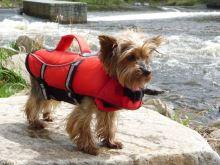Trixie Záchranná vesta S, 42-66/36cm do 20kg