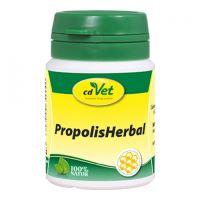 cdVet Propolis Herbal 20g