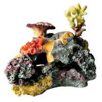Korálový útes, Trixie