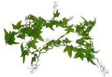 Lucky Reptile Ivy Vine, cca 200cm