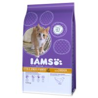 IAMS Kitten rich in Chicken 2,55 kg