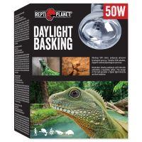 Žárovka REPTI PLANET Daylight Basking Spot 50W