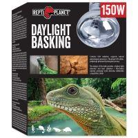 Žárovka REPTI PLANET Daylight Basking Spot 150W