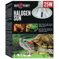 Žárovka REPTI PLANET Halogen Sun 25W
