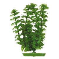 Rostlina LIVING WORLD Ambulia 30cm