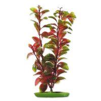 Rostlina LIVING WORLD Red Ludwigia 30cm