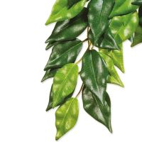 Rostlina EXO TERRA Ficus malá 45cm