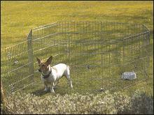 Ohrádka SAVIC Dog Park 1 - 61x61 cm