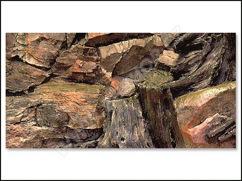 Pozadí AQUA EXCELLENT Root 60x30cm
