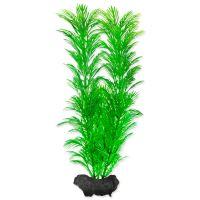 Rostlina TETRA Green Cabomba M