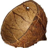 Coco skořápka